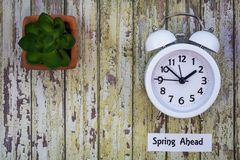 Daylight Savings Time Spring Ahead concept flat lay. Daylight Savings Time Spring concept top down view with white clock and succulent on distressed wooden board Stock Images