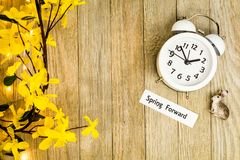Daylight Savings Time Spring Ahead concept top down view. Daylight Savings Time Spring concept top down view with white clock and yellow forsythia flowers on Stock Photo