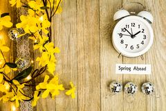 Daylight Savings Time Spring Ahead concept top down view. Daylight Savings Time Spring concept top down view with white clock and yellow forsythia flowers on royalty free stock photo