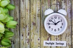 Daylight Savings Time Spring concept top down view with white clock and green tulips. Daylight Savings Time Spring concept top down view with white clock and Stock Image