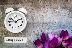 Daylight Savings Time Spring Forward concept top down view with white clock and purple tulips. Daylight Savings Time Spring concept top down view with white Royalty Free Stock Photography