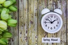 Daylight Savings Time Spring Ahead concept top down view with white clock and green tulips. Daylight Savings Time Spring concept top down view with white clock stock images