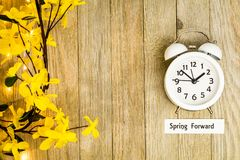 Daylight Savings Time Spring Forward concept top down view. Daylight Savings Time Spring concept top down view with white clock and yellow forsythia flowers on Royalty Free Stock Photography