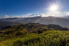 Daylilyblommor i sextio sten Mtn i Taiwan Arkivbild
