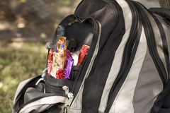 daypack Стоковые Изображения RF
