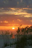 Days End. Sunset with seaoats in Madeira Beach Florida. Tampa Bay Area Stock Photo