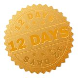 Golden 12 DAYS Medal Stamp. 12 DAYS gold stamp seal. Vector gold medal of 12 DAYS text. Text labels are placed between parallel lines and on circle. Golden vector illustration