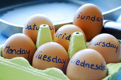 Days of the week with eggs. And a frying pan in back royalty free stock image