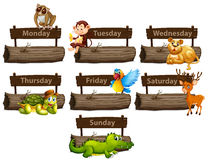 Days of the week with many animals Stock Photography