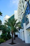 Daytona海滩oceanview旅馆 免版税库存图片