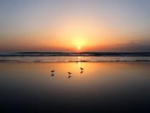 Daytona海滩日落 免版税库存图片