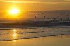 在海滩的日出在Daytona Beach佛罗里达 库存照片