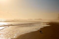 Daytona Beach en Floride avec le pilier Etats-Unis Image libre de droits