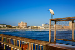 Daytona Beach in Florida from pier US Royalty Free Stock Photography