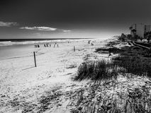 On the edge of the beach. Daytona Beach, Florida, U.S.A.January 2016.Photo taken on the seashore, it was taken in the morning. People were walking around and Royalty Free Stock Photography