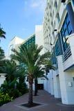 Daytona Beach oceanview hotel Royalty Free Stock Images