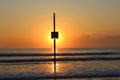 Daytona sunrise ocean waves beach Royalty Free Stock Images