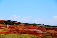 The Dazzling Dongchuan Red Soil Scenic Area. Dongchuan Red Soil Scenic Area is located in a warm and humid environment. Iron in the soil is slowly deposited by stock photos