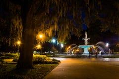 Dębowy drzewo i fontanna przy nocą w Forsyth parku, sawanna, Georgi Zdjęcia Royalty Free