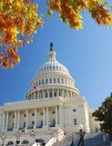 DC di Campidoglio Washington nella caduta Fotografia Stock Libera da Diritti