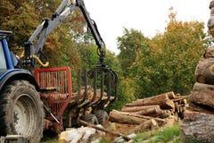 Déchargement du bois de chauffage. Travaux d'automne Photos stock