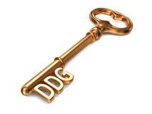 DDG - Chiave dorata su fondo bianco Fotografia Stock Libera da Diritti