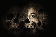 dödlivstid Arkivbilder