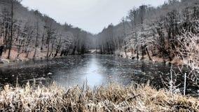 ‰ De à gervölgy en invierno Imagen de archivo