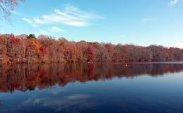 De ändrande färgerna på hösten Stubbedamm New York arkivbild
