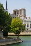 Собор Нотр-Дам de Парижа возвышается, Река Сена в лете Франция Стоковое фото RF