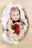 De aanbiddelijke bloemen van de babyholding, vlinderdasje Royalty-vrije Stock Foto