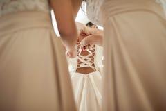 De aanbiddelijke bruiden van de bruidsmeisjekleding staan elegante kleding bij Royalty-vrije Stock Afbeelding