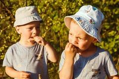 De aanbiddelijke kleine jongens eet witte aalbes Royalty-vrije Stock Foto