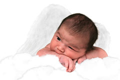 De aanbiddelijke Vlinder van het Meisje van de Baby stock foto