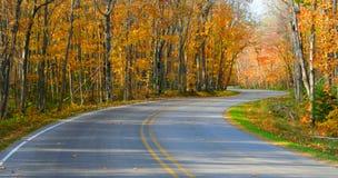 De aandrijving van de herfst Stock Foto