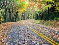 De Aandrijving van de herfst Stock Foto's