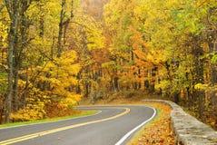 De Aandrijving van de horizon in de Herfst Stock Foto's
