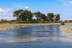 De aandrijving van de safari in de Delta Okavango in Botswanai Royalty-vrije Stock Foto's