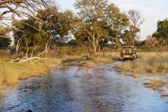 De aandrijving van de safari in de Delta Okavango in Botswanai Stock Foto