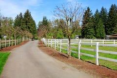 De aandrijvingsmanier van het paardlandbouwbedrijf Stock Fotografie