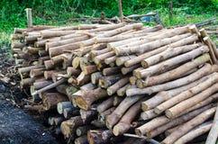 De aangewezen milieufactoren Milieu redelijke factoren, stock foto's