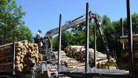 De aanhangwagen houten logboek van de mensenlading stock footage