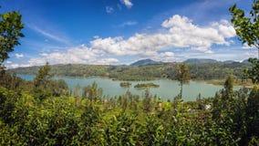 De aanplanting van de thee, Sri Lanka Stock Fotografie