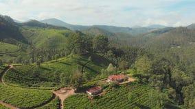 De aanplantingen van de satellietbeeldthee van India De staat van Kerala Dichtbij het meer Matupetty stock footage