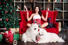 De aantrekkelijke boom van vrouwen bijna Kerstmis Stock Afbeeldingen