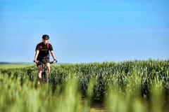 De aantrekkelijke fietser van de fietser berijdende berg op het de zomer groene gebied Stock Afbeeldingen