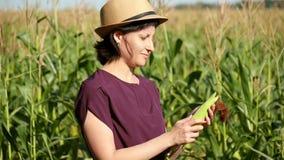 De aantrekkelijke jonge vrouwenlandbouwer maakt het graan van de schil schoon en controleert het gewas bereidheid tegen de achter stock video