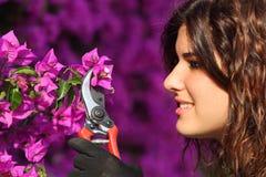 De aantrekkelijke scherpe bloemen van de tuinmanvrouw met snoeischaar Stock Foto