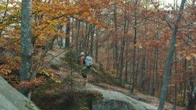 De aantrekkelijke vrouwentoerist met een rugzak op haar schouders reist door de herfst bos voorbij de rotsen stock videobeelden