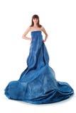 De aantrekkingskrachtvrouw van de elegantie in blauwe kleding Stock Afbeelding
